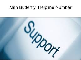 How to Get MSN Butterfly on Desktop?